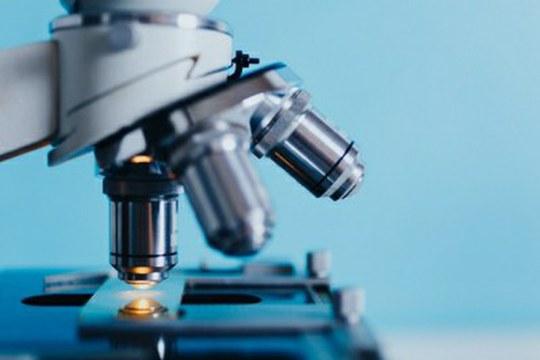 Dal progetto CARBALIVE un trattamento innovativo per la cirrosi epatica